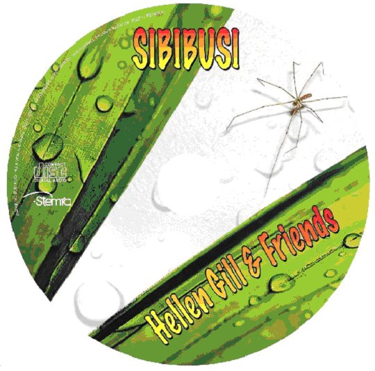 flyer cd Label